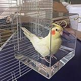Bañera espaciosa para pájaros, cacatúas, loros, transparentes, con ganchos para colgar, suministros para mascotas, perritos acrílicos, limpieza de casa portátil