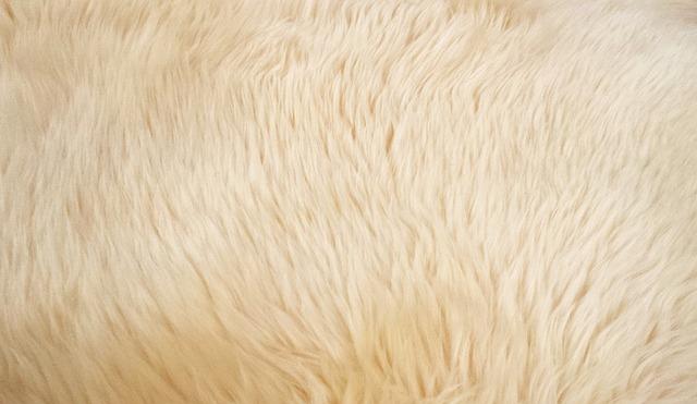 Pelo de cabra para nidos de jilgueros